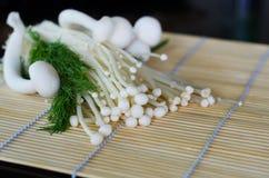 Белые гриб и укроп на деревянной циновке Стоковое Изображение