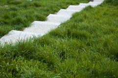 Белые лестницы Стоковая Фотография RF