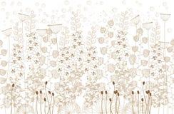 Белые и бежевые цветки и трава на белой предпосылке также вектор иллюстрации притяжки corel иллюстрация вектора