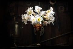 Белые лилии на темной предпосылке Стоковое Изображение