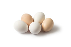 Белые и коричневые яичка на белой предпосылке Стоковые Изображения RF