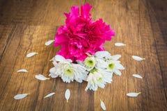 Белые и розовые цветки на земле с лепестком Стоковая Фотография