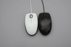 Белые и черные mouses с кабелями Стоковые Фото