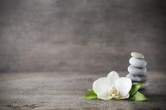 Белые камни орхидеи и курорта на серой предпосылке стоковое изображение rf