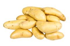 Белые картошки fingerling изолированные на белизне Стоковые Изображения