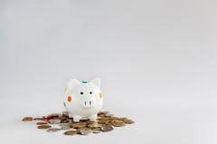 Белые копилка или денежный ящик с монетками денег Стоковое фото RF