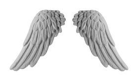 Белые крыла гипсолита Стоковое Изображение