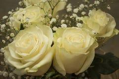 Белые нежные розы в букете Стоковые Изображения RF