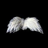 Белые неоновые крыла ангела Стоковое Изображение