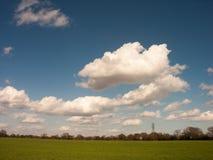 Белые облака в голубых небесах над зелеными полями Стоковые Изображения RF