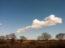 Белые облака в голубых небесах над зелеными полями Стоковое Изображение RF