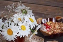 Белые одичалые цветки маргаритки в вазе Стоковые Фото