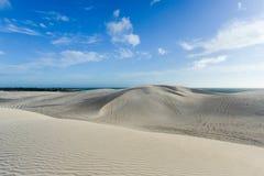 Белые песчанные дюны заповедника Nilgen Стоковая Фотография RF