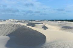 Белые песчанные дюны заповедника Nilgen Стоковое Изображение RF