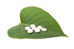 Белые пилюльки на зеленых лист Стоковая Фотография