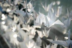Белые птицы Origami летают с строками Стоковое фото RF