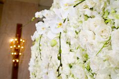 Белые розы и лампа в гостинице Стоковое Изображение