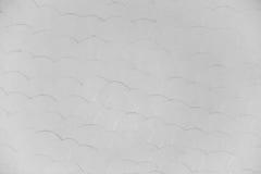 Белые рыбы снимают кожу с стены краски, предпосылки, безшовной текстуры, скороговорки Стоковое Фото