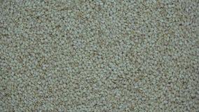 Белые семена сезама поворачивая предпосылку еды акции видеоматериалы