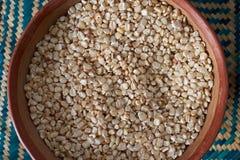 Белые сухие семена мозоли Стоковое фото RF