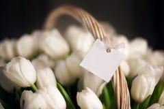 Белые тюльпаны, букет в конце-вверх корзины карточка пасха Стоковое Фото