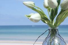 Белые тюльпаны в вазе на пляже Стоковая Фотография RF
