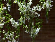 Белые украшения орхидеи Стоковые Фото