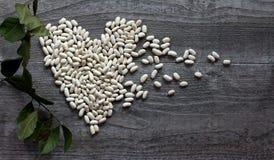 Белые фасоли как еда символа здоровая Стоковые Фотографии RF
