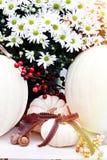 Белые хризантемы и тыквы Стоковые Фотографии RF