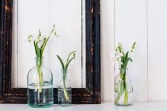 Белые цветки весны Стоковые Фотографии RF