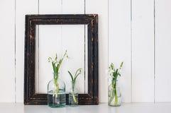 Белые цветки весны Стоковое Изображение