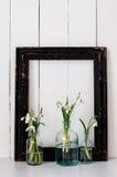 Белые цветки весны Стоковая Фотография RF