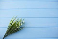 Белые цветки на голубой деревянной предпосылке Стоковое Изображение