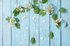 Белые цветки на деревянной предпосылке Стоковые Фото