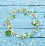 Белые цветки на деревянной предпосылке Стоковые Изображения