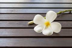 Белые цветки на деревянном столе Стоковая Фотография RF