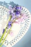 Белые цветки сердца и bluebells на свете - голубой предпосылке Стоковые Изображения