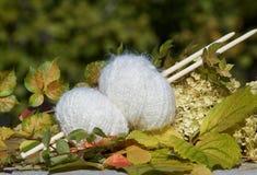 Белые шарики woll на листьях осени Стоковая Фотография RF