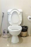 Белые шар и туалетная бумага туалета с ящиком в ванной комнате Стоковое Изображение