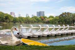Белые шлюпки педали лебедя на парке Lumpini, Бангкоке Стоковые Изображения RF