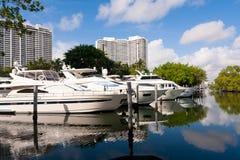 Белые яхты, Майами Стоковая Фотография RF