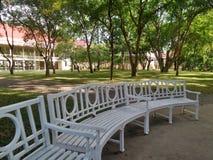 Белые benchs сада в тихом дворце зеленеют парк Стоковое Изображение