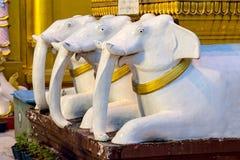 Белые elefants на пагоде Shwedagon Стоковое Изображение RF