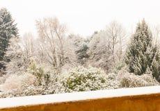 Белый ландшафт зимы Стоковое Изображение
