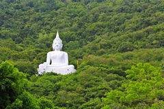 Белый Будда на горе Стоковая Фотография RF