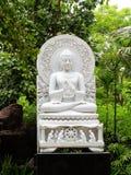 Белый Будда стоковые фото