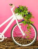 Белый велосипед на розовой стене Стоковое Фото