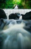 Белый водопад в джунглях стоковые фотографии rf