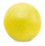 Белый грейпфрут изолированный на белой предпосылке Стоковая Фотография RF