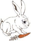 Белый зайчик с морковью Стоковая Фотография RF